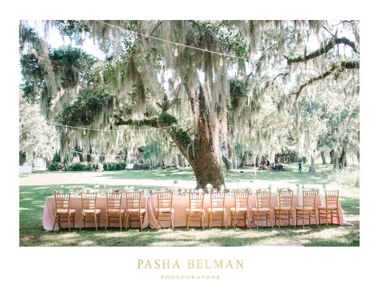 Litchfield Plantation Wedding Photography by Pasha Belman in Paw